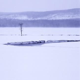 Yellowstone in winter, Wyoming