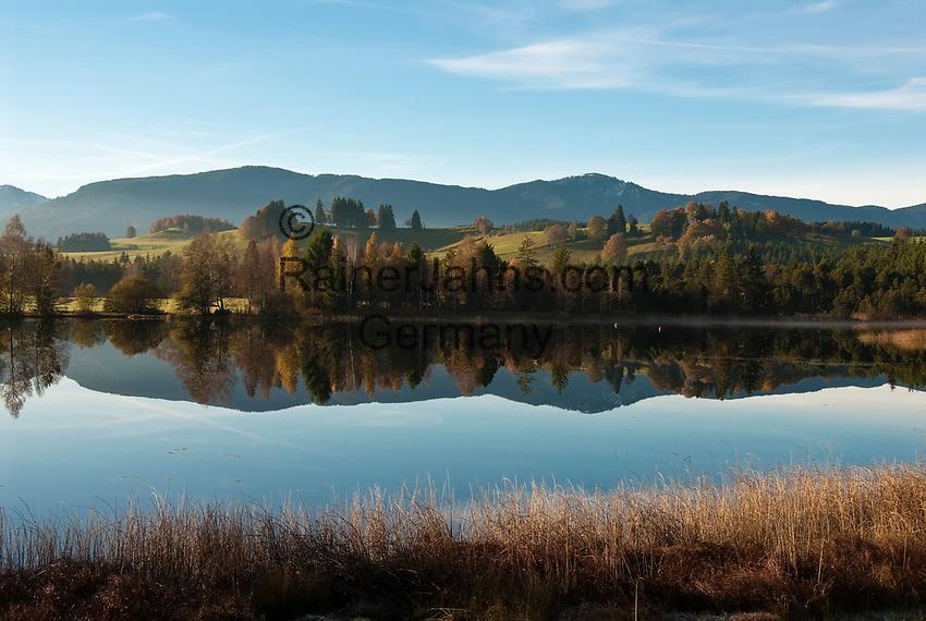 Deutschland, Bayern, Oberbayern, Pfaffenwinkel, bei Wildsteig: Herbststimmung am Schwaigsee | Germany, Upper Bavaria, near Wildsteig; autumn scenery at Schwaig Lake