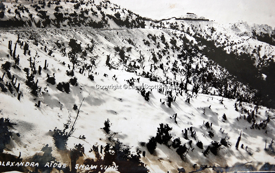 BNPS.co.uk (01202 558833)<br /> Pic: LaceyScott&Knight/BNPS<br /> <br /> Alexandra Ridge snow line.<br /> <br /> From the far reaches of the British Empire - Remarkable previously unseen photos of a forgotten military campaign has come to light 100 years later.<br /> <br /> The little known Waziristan campaign of 1919 and 1920 saw the British and Indian forces engaged in fierce fighting against Afghan tribesman who invaded northern India.<br /> <br /> However, the conflict, which saw the use of the might of the RAF in targeted bombing raids, has become almost lost to history since it took place just after the Great War.<br /> <br /> The battleground was the rugged, remote, mountainous region which is modern day northern Pakistan, on the southern border of Afghanistan.