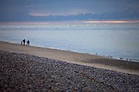 Europe/France/Picardie/80/Somme/Baie de Somme/ Le Hourdel: Paysages de la Baie de Somme