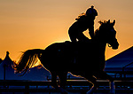 May 15, 2019 : A horse exercises on the track at sunrise as horses prepare for Preakness Week at Pimlico Race Course in Baltimore, Maryland. Scott Serio/Eclipse Sportswire/CSM