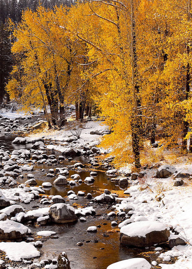 Early Snow, Truckee River
