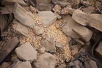 Food lies in the ground at Jalkeli village, outskirts of Kathmandu, Nepal. May 1, 2015