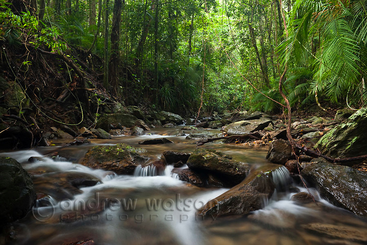 Rainforest creek at Crystal Cascades - a popular freshwater swimming hole near Cairns, Queensland, Australia