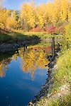 Idaho, Boundary County, Bonners Ferry. Autumn reflections and fog on Deep Creek, a tributary to the Kootenai River.