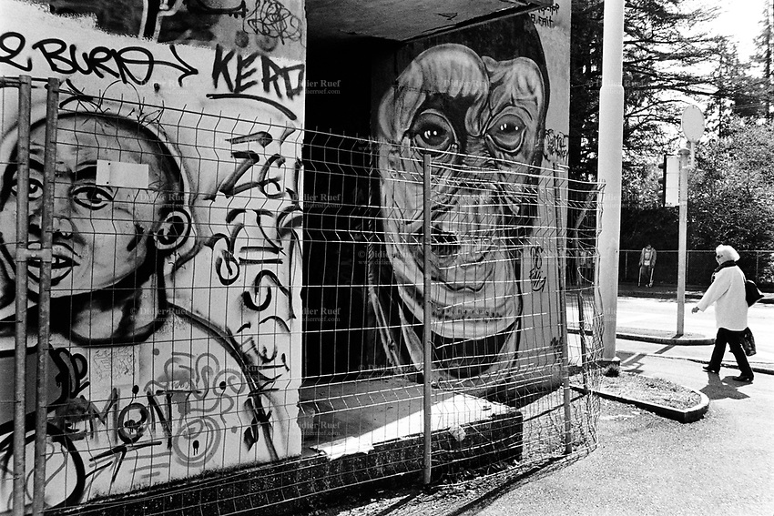 Switzerland. Geneva. An old woman walks in the street and passes-by a derelict building with walls covered with graffitis. A chimpanzee and a black african man. Chimpanzees, sometimes colloquially chimps, are two extant hominid species of apes in the genus Pan. Chimpanzees are members of the family Hominidae, along with humans. Chimpanzees split from the human branch of the family about four to six million years ago. 16.03.14 © 2014 Didier Ruef