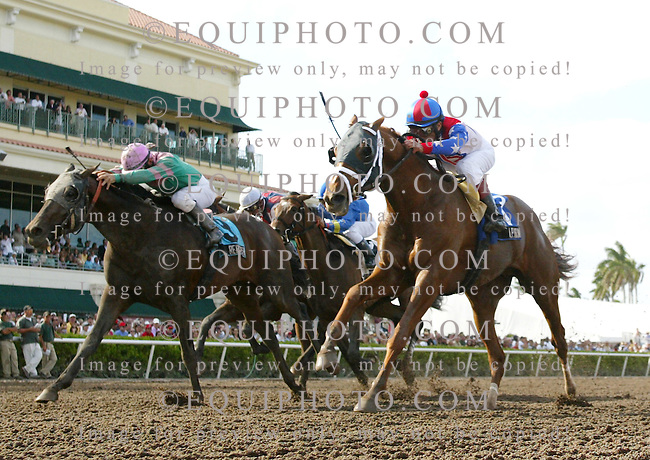 A.P. Arrow #3 with Edgar Prado riding  holds off the challenge of #9 Rehoboth and Manoel Cruz to win the $150,000 Skip Away Stakes at Gulfstream Park. 3/31/07.  Photo By Bill Denver/EQUI-PHOTO