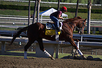 Dullahan galloping for trainer Dale Romans at Santa Anita Park in Arcadia California