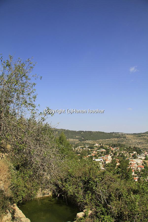 Israel, Jerusalem mountains, Ein Uzi in Aminadav forest