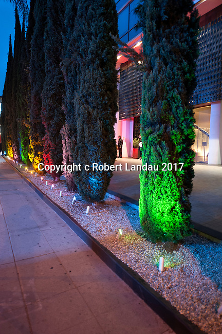 Lit cypress trees at dusk in front of the Andaz Hotel on the Sunset Strip in Los Angeles, CA