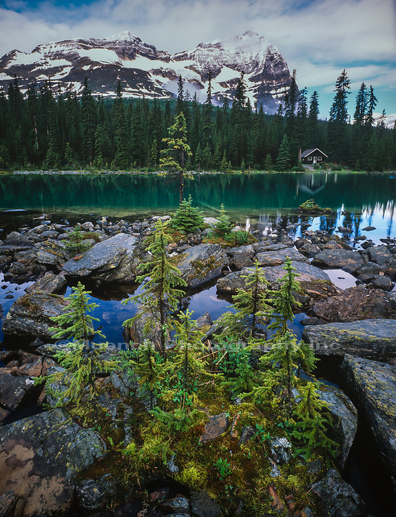 Lake O'Hara,Yoho National Park,Canada,BC
