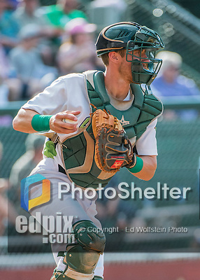 31 July 2016: Vermont Lake Monsters catcher Brett Sunde in action against the Connecticut Tigers at Centennial Field in Burlington, Vermont. The Lake Monsters edged out the Tigers 4-3 in NY Penn League action.  Mandatory Credit: Ed Wolfstein Photo *** RAW (NEF) Image File Available ***