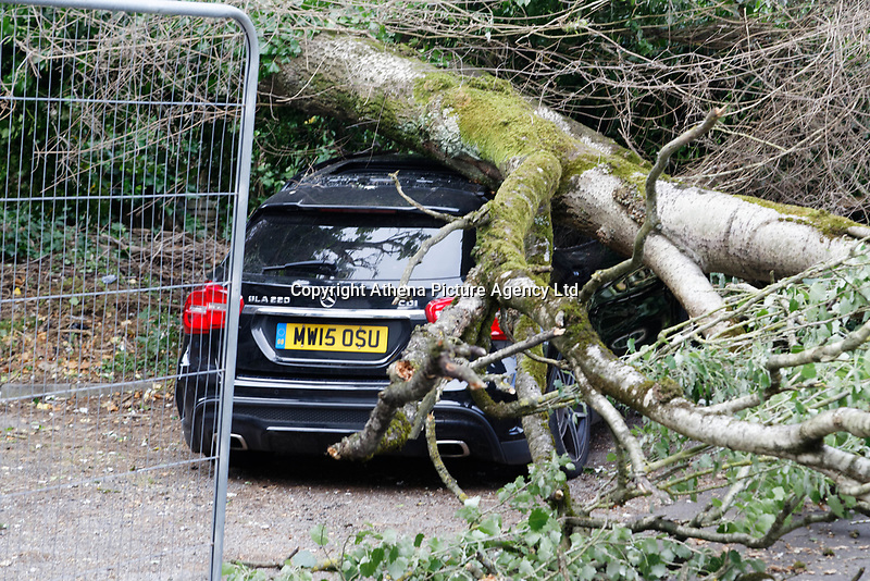 Pictured: The Mercedes GLA220 car which has been crushed by a tree in Cardiff, Wales, UK. Friday 15 June 2018<br /> Re: A large tree has fallen and crushed a Mercedes car, moments after its owner had parked and got out.<br /> The 28m (92ft) tree remains close to railway lines in after coming down in Park Grove, in the Cathays area of Cardiff, in Wales, at about 9.20am.<br /> Students at nearby Celtic English Academy described hearing a creaking noise followed by a loud bang.<br /> The owner of the Mercedes GLA220 car said the tree fell on her car less than a minute after getting out.<br /> The woman, who did not want to be identified, was left shaken but unhurt.