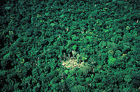 In the western province of Rondonia, settlers have cleared a small patch of land in the jungle and built a hut. Aerial view. Deforestation. Amazon River basin, landscape, natural resources. Brazil Rondonia.