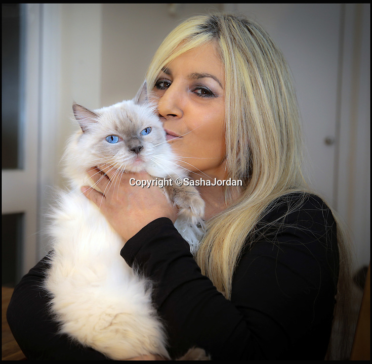 BNPS.co.uk (01202 558833)<br /> Pic: SashaJordan/BNPS<br /> <br /> Sasha Jordan with ragdoll, Pixie.<br /> <br /> A British woman who set up a Facebook page for her beloved pet cats has been left stunned after they attracted 1.2 million followers.<br /> <br /> Sasha Jordan said she spends up to five hours a day running the group that is dedicated to her seven cats - Rocky, Prince, Pixie, Ugs, Norman, Tom and Junior.<br /> <br /> Her time is taken up answering questions from fans of the moggies, who she has nicknamed the Magnificent 7 Cats, uploading photos of them and posting status updates.