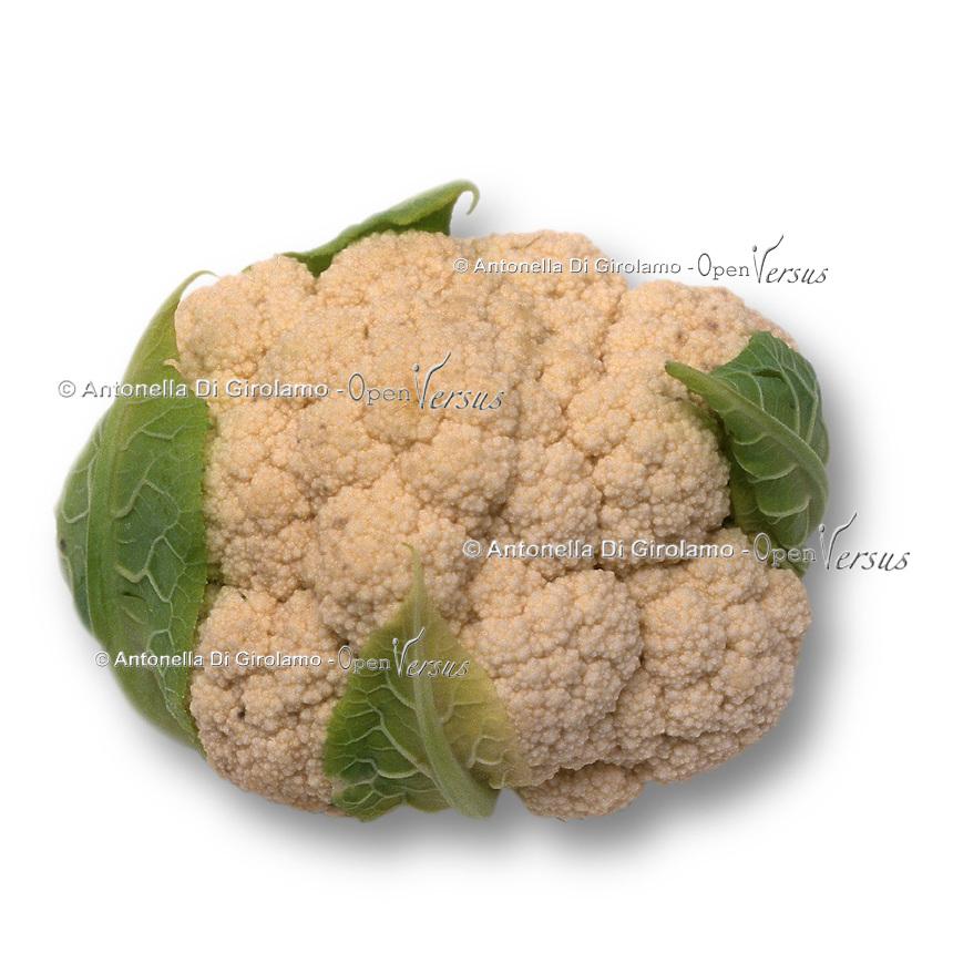 Cavolfiore. Cauliflower.