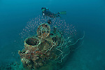 Japanese mini sub wreck 50 meters away from the Sanko Maru wreck in New Hanover