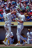 OAKLAND, CA - Jose Canseco of the Oakland Athletics greets teammate Mark McGwire at home plate with a forearm bash after McGwire hot a home run during a game at the Oakland Coliseum in Oakland, California in 1990. (Photo by Brad Mangin)