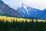 Mount Edith Cavell (11,047 feet), Jasper National Park, Alberta, Canada