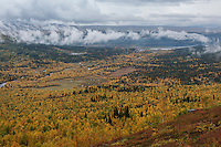 Autumn landscape surrouding Ammarnäs, from Kungsleden trail, Lapland, Sweden