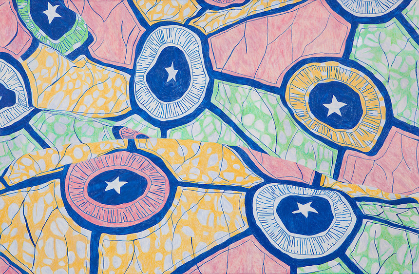 "Household Cloth. Nzulezu Village. (Western GH.) Continental Drift. Color Pencil on paper. 26"" x 40"". Judy Byron. 2013<br /> Photo credit: Rick Reinhard"