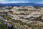 Petrified Sand Dunes where the Escalante River flows through The Grand Staircase Escalante region of Utah in Autumn, USA