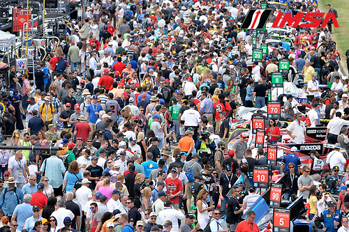 3-4 June, 2016, Detroit, Michigan USA<br /> Crowd of fans on the pre-race grid, atmosphere<br /> &copy;2016, Scott R LePage <br /> LAT Photo USA