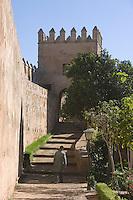Afrique/Afrique du Nord/Maroc/Rabat: dans le jardin des Oudaïas dans la kasbah des Oudaïas