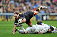 Wasps v Leinster