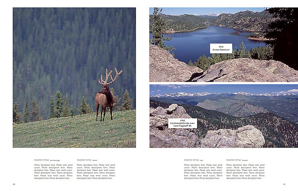 Private wildlife photo tours by John.<br />