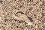 Footprint in sand, Corralejo Dunes National Park (Parque Natural de las Dunas de Corralejo), Fuerteventura, Canary Islands, Spain