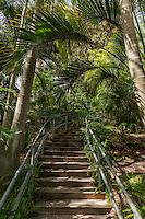 San Diego Botanical Garden
