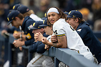 Michigan Wolverines outfielder Jordan Brewer (22) in the dugout during the NCAA baseball game against the Michigan State Spartans on May 7, 2019 at Ray Fisher Stadium in Ann Arbor, Michigan. Michigan defeated Michigan State 7-0. (Andrew Woolley/Four Seam Images)