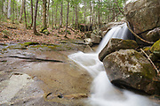 Small cascade on Stony Brook in Hart's Location, New Hampshire during the spring months. This brook is on the side of Mount Tremont Trail.