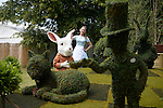 Agrumi 'We are mad here!'  Garden Celebrates 150 years since Lewis Carroll's  Alice's adventures in Wonderland was first published<br /> at the RHS Hampton Court Flower show. <br /> <br /> Bethany Clarke / RHS / London 29.6.15