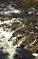 Atlantic Salmon Catch and Release Fly Fishing in Iceland. Fly fisherman casting into rapids in Svalbardsa River, Skriduhylur pool.