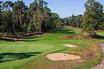 Valkenswaard  - hole 2 ,  Eindhovensche Golf Club.   COPYRIGHT KOEN SUYK