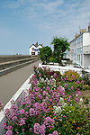 Seafront cottages and Old Neptune pub, Whitstable, Kent, England