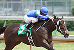 Hot Dixie Chick with Robby Albarado up wins Maiden, Fillies two year old at Churchill Downs. 06.13.2009