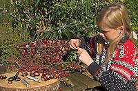 Kinder basteln mit Kastanien und Herbstfrüchten, Mädchen fädelt Hagebutte auf einen Draht auf, Kastanie
