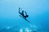 Dafrin Ambotang (35), a Bajau fisherman, dives to the sea bed with his speargun in search of fish. He can dive for up to four minutes on one breath, but he is one of just a handful of men in his village who still retain this skill.