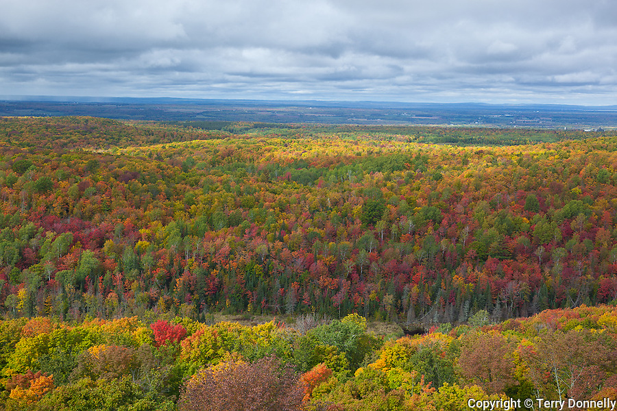 Chequamegon National Forest, WI<br /> Hardwood forest canopy in fall color.  View toward Lake Superior from St. Peter's Dome at 1600 ft, the summit of Chequamegon National Forest