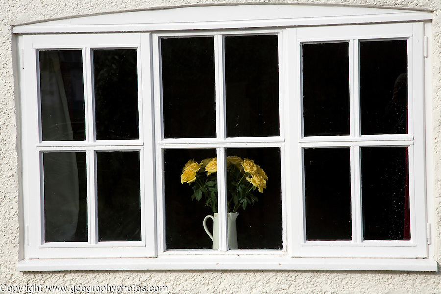Yellow roses in vase in window
