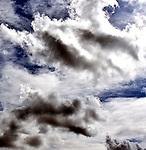Appropriate Skies