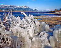 Ice formations along Columbia River in The Columbia River Gorge National Scenic Area in Oregon-Washington