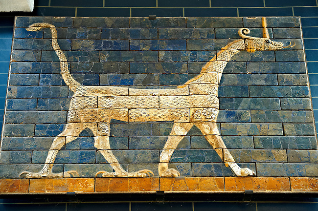 Dragon relief on glazed bricks from the Ishtar Gate, Babylon, Iraq constructed in about 575 BC by order of King Nebuchadnezzar II on the north side of the city. Dedicated to the Babylonian goddess Ishtar, the monumental gate joined the inner & outer walls of Babylon it was one of the Seven Wonders of the ancient world. Istanbul Archaeological Museum.