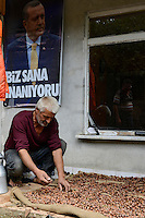 TURKEY, Cumayeri near Duzce, hazelnut farmer / TUERKEI, Cumayeri, Haselnuss Bauer Jusuf Ak im Dorf Uevezbeli