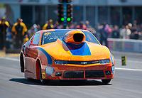 Apr 14, 2019; Baytown, TX, USA; NHRA mountain motor pro stock driver John DeFlorian during the Springnationals at Houston Raceway Park. Mandatory Credit: Mark J. Rebilas-USA TODAY Sports