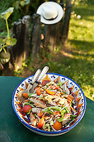 Salad with chicken, apricots and pine nuts