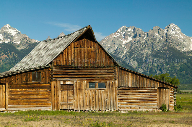 The Thomas Alma Moulton  barn on Mormon Row with the Teton Range in the background in Grand Teton National Park, Wyoming, USA
